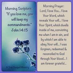 "Morning Scripture:    ""If you love me, you will keep my commandments."" John 14:15 Morning Prayer: Lord, I love You... I love Your Word, which reveals Your will... I love Your Spirit, which dwells inside of me, convicting me when I am in sin, and by which I am able to obey Your will... I was forgiven, redeemed & reconciled to God through Your blood... I am forever grateful... #morningprayer #morningscripture #scripturequote #biblequote #instabible #instaquote #quote #seekgod #godsword…"