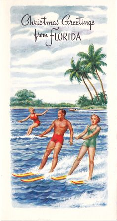 Vintage Florida Christmas Postcard