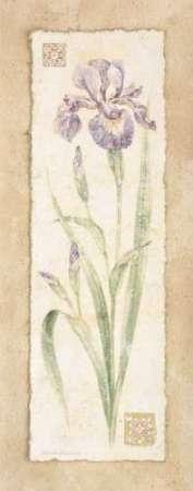 Cuadro Iris