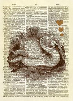 Swans in Love Dictionary Art Print