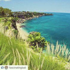 Dage som denne, så savner jeg Bali, varmen og en #pinacolada på stranden ☺ Ses vi i butikken senere ?  #sun #Bali #drømmermigvæk #nicolepiper  Billedet er fra@fascinatingbali