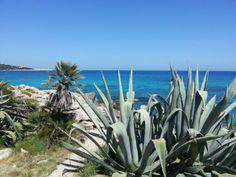 #Mallorca bei #Cala Ratjada.
