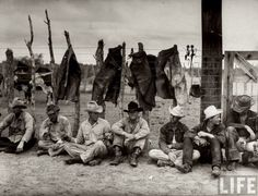 """""""Lubbock, TX, 1940 – Matador, A Texas Ranch: Seven cowboys sitting along corral fence draped with their chaps (which they don't wear while not working), as they wait for brand irons to heat up during cattle roundup at Matador Ranch, the second largest in the state."""" – photo by Hansel Mieth"""