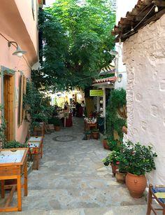 Samos Greece, Arizona, Greek, Leaves, Hu Ge, Destinations, Seeds, Greece