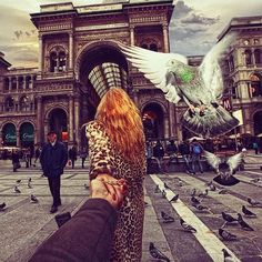 #followmeto Milan, where pigeons are attacking