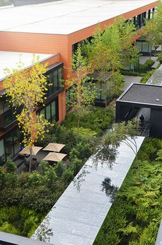 Coyoacan Corporate Campus Landscape by - DLC Architects « Landscape Architecture Works Landscape Design Software, Landscape Architecture Design, Landscape Plans, Urban Landscape, Architecture Jobs, House Landscape, Parcs, Old Houses, Garden Landscaping