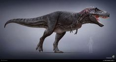 Tyrannosaurus model for The Stomping Land project. Lowpoly game model and real-time rendering in Marmoset. Textured by Andrey Atuchin. Concept art by Rodrigo Vega. http://www.thestompingland....