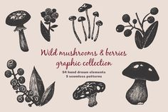 Mushrooms and Berries collection by Thunderwhale.art on @creativemarket #food #creative #download #menu #restaurant #design #graphic #drawing #cafe #vintage #print #illustration #logo #cute #vector #art #funny #poster #doodle #drawing #label #icon  #herbs #mushroom #spices