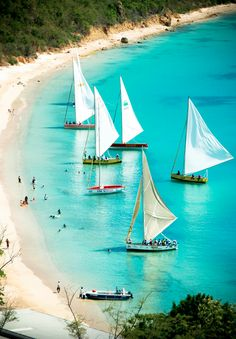 Anguilla (Source: flickr.com) www.facebook.com/loveswish