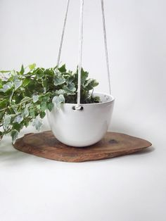 Hanging Planter  Hanging pot for small/medium plants by viCeramics