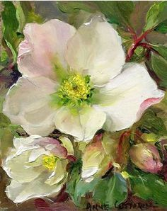 Christmas Roses - Mill House Fine Art – Publishers of Anne Cotterill Flower Art Arte Floral, Watercolor Flowers, Watercolor Paintings, Painting Flowers, Abstract Paintings, Art Paintings, Painting Art, Landscape Paintings, Watercolour