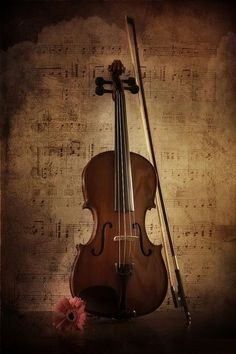 Violin - Violin / Violin + Music Instruments / Musical Instruments - Different and beautiful ideas Violin Art, Violin Music, Music Aesthetic, Aesthetic Vintage, Raindrops And Roses, Violin Lessons, Wallpaper Aesthetic, Music Artwork, Music Wallpaper