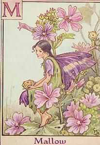 Botany and Beauty are joined together in these lumious paintings by mary Cecily Barker. This artist is also a poet who has made painting for each of her works. You can find the Flower Fairies in books at Vaughan Public Libraries http://catalogue.vaughanpl.info:8080/search/query?term_1=Flower+Fairies