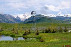 Property Details | Crested Butte Real Estate #crestedbutte #dreamhome #countryliving