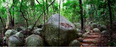 Secret Garden Walking Trail at Fitzroy Island, Queensland, Australia