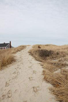 East Sandwich beach, Cape Code, http://sarahwinchester.wordpress.com/2011/02/28/summer-dreaming-2/