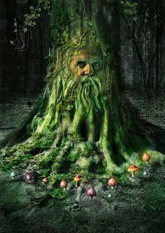 Xooimageforest guardian, un esprit gardien des forets