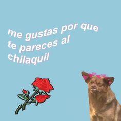 Me gustas porque te pareces al Chilaquil