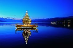 "Illuminated Christmas tree for the ""Quiet Advent"" on the Johannes-Brahms-Promenade, western bay in Pörtschach am Wörthersee, district Klagenfurt Land, Carinthia, Austria"