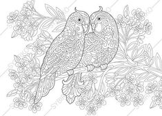 Budgie Parrots. Birds in Love. Coloring Page for Valentines day greeting card. Animal coloring book pages for Adults. Instant Download Print