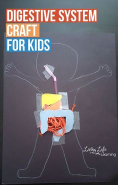 A hands-on way to look at the digestive system, create this cute digestive system craft for kids and learn how food travels through our body.