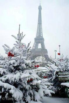 Ah dang!! I gotta go to Paris at Christmas!!!!