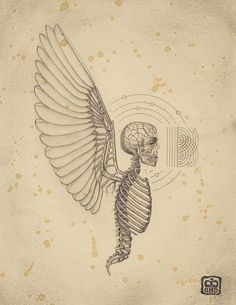 Combining traditional anatomical drawing and biological illustration with sacred geometry, chemistry, and mathematical principles, Tuscon artist Daniel Martinez Diaz creates precise, detailed works that easily bridge the gap between science and mysticism. Science Drawing, Science Art, Inspiration Artistique, Psy Art, Occult Art, Desenho Tattoo, Mexican Artists, Anatomy Art, Anatomy Bones