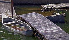 "Canoe and turtles by Linda M Gardner digital art ~ 11"" x 14"""