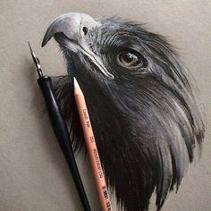 Drawing #Art #AnimalArt