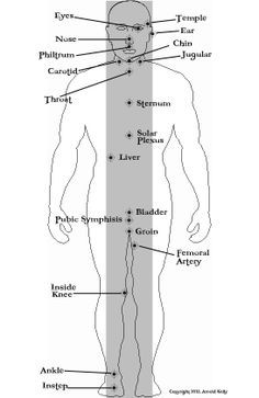 """The """"Line of Pain"""" concept. All the most effective pressure points used in self defense can be found in a straight line, down the middle of the body."""