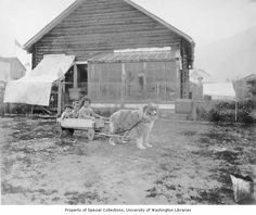 Man trying to encourage dog to pull three children in wagon, Circle City, ca. 1914. Curtis, Asahel, 1874-1941