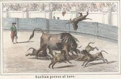 Sueltan perros al toro de Marquis Davidsard 1930