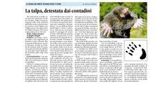 articolo di Adriana Robba (La Guida 25 aprile 2014)