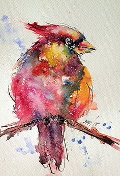 Cardinal bird by Kovacs Anna Brigitta
