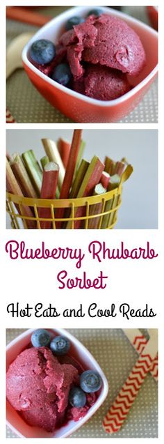 Amazingly delicious spring or summertime treat! Perfect for those hot days when you need to cool off! Add to soda or wine for a delicious beverage! Blueberry Rhubarb Sorbet Recipe from Hot Eats and Cool Reads