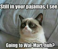 14 Hilarious Grumpy Cat Memes That Will Make You Smile - Funny Cat Quotes Grumpy Cat Quotes, Funny Grumpy Cat Memes, Cat Jokes, Funny Cats, Funny Jokes, Grumpy Kitty, It's Funny, Funny Dog Fails, Cats Humor