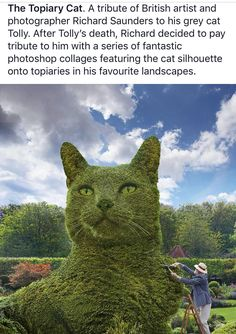 Topiary Cat Trust Love, Love And Respect, Richard Saunders, Cat Plants, Cat Silhouette, Topiary, Photoshop, Landscape, Cats
