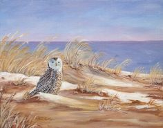 Snowy Owl - acrylic by Toni Kelly