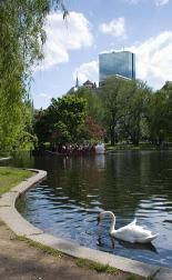 Boston Common and Public Garden, Walkways, Flowers, and Swanboats http://www.softseattravel.com/Boston-Common-Public-Garden.html