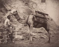 A camel and handler in Aden, ca. 1880 / Bonhams