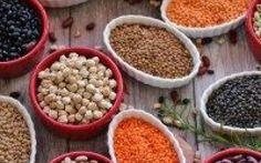 Perché il 2016 sarà l'anno dei legumi: tipologia benefici e La FAO ha dichiarato che il 2016 sarà l'anno dei legumi riconducendosi al tema della sostenibilità food alimentazione legumi proteine