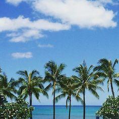 【hawaii_703】さんのInstagramをピンしています。 《清々しい~!#青空 #青い空青い海 #青い空 #青い海 #景色 #風景 #風景写真 #快晴 #ビーチサイド #海 #空 #雲 #ヤシの木 #眺め最高 #ワイキキ #ホノルル #ハワイ #癒される #天気 #bluesea #bluesea #sky #clouds #sea #beach #beachside #landscape #niceview #palmtrees #waikiki #hawaii》