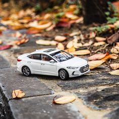 The fallen leaves lit by late autumn say hello to winter - 붉은 가을 빛을 머금은 낙엽이 지면 어느새 와서 인사하는 겨울 - #justaroundthecorner #winter #soon #fallenleaves #sayhello #takeawalk #coldwind #travel #drive #park #car #carsinstagram #diecast #Elantra #AVANTE #Hyundai