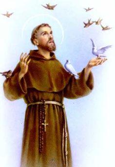 São Francisco, Amigo de Deus, da Igreja, dos Animais... Rogai por nós!