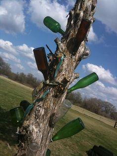 bottle tree...