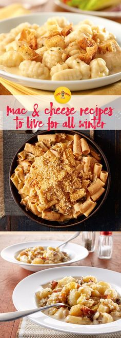 Macaroni and cheese is a childhood favorite most adults love just as much! Find sophisticated versions of your favorite macaroni and cheese recipes like Spicy Korean Mac or new forms like Macaroni and Cheese Pizza.