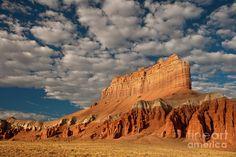 Wild Horses Utah Tours | Wild Horse Butte Goblin Valley Utah Photograph