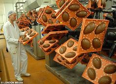 Easter egg production, the constant reveloution of the eggs makes them hollow Easter Egg Moulds, Egg Molds, Easter Eggs, Food Manufacturing, Chocolate Coating, Willy Wonka, Chocolate Factory, Gingerbread Cookies, Shapes