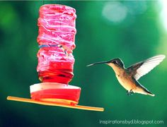 Inspirations by D: How to Make a Hummingbird Feeder (Updated)