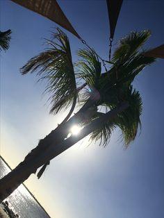 #palmtrees #sun #goodlife #beach